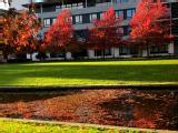 Walking around Campus