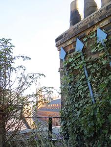 Stanley House roof garden