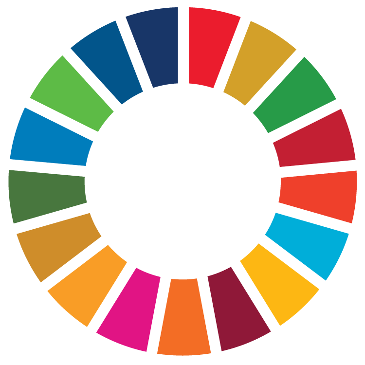 sdg_wheel_transparent.png