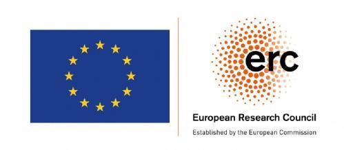ERC Flag logo