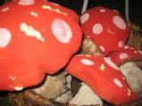 i_fb_mnd_2008__273.jpg