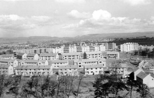 Image 4 Corporation housing at Pollok 1950.jpg