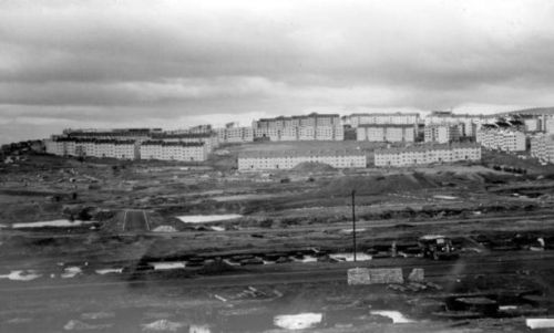 image_5_corporation_housing_at_drumchapel_january_1954.jpg
