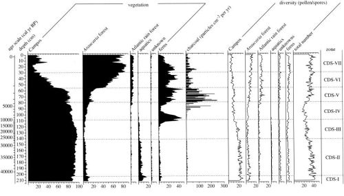 Figure 2: Pollen profile registering late Holocene vegetational changes in the southern Brazilian highlands