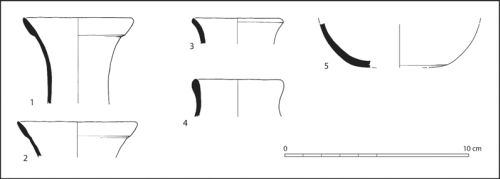 Figure 7: Profiles of Taquara/Itararé drinking cups, as recovered from PM01