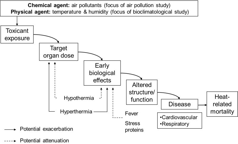 Modification of the exposure-dose continuum taking into consideration the possible effects and consequences of heat stress and thermoregulatory responses