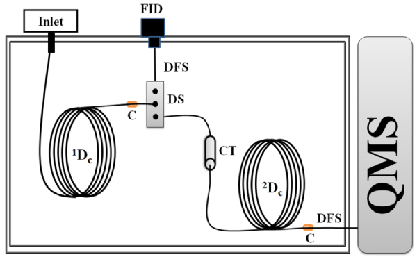 Enantioselective Multidimensional Gas Chromatography for the