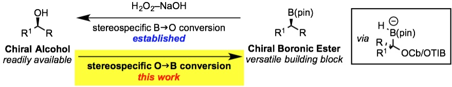 tereospecific conversion of alcohols into pinacol boronic esters using lithiation–borylation methodology with pinacolborane