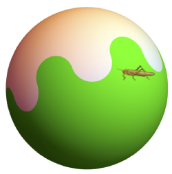 Bloch sphere with grasshopper