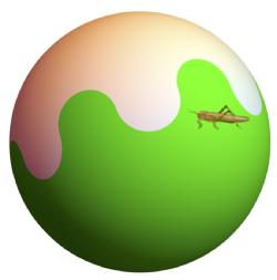 Bloch sphere with grasshopper