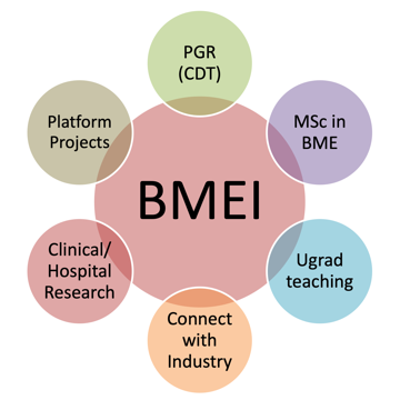 BMEI What We Do