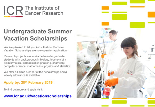 Summer Studentship Opportunities