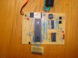 board_01.jpg