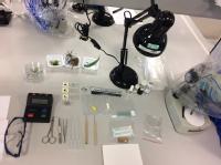 Botany exam set up