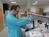 Checking sample dilutions with spectrophotometer