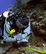 Coral reef research