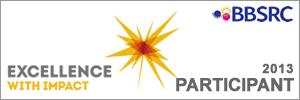 participant-excellence-impact.png