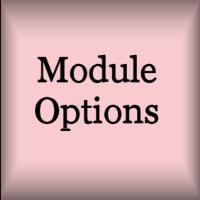 options.jpg