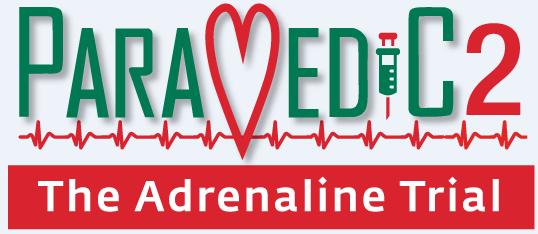 Paramedic 2: Adrenalin Trial