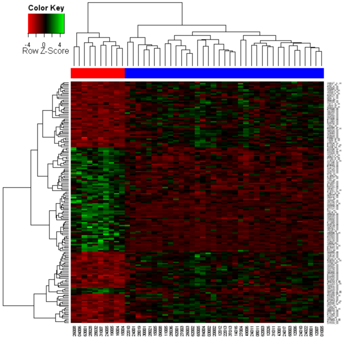 [Heatmap picture, red-green colours with scaling, and with patient type colour bar and color key]