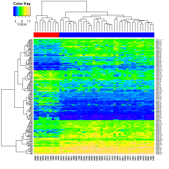 [Heatmap picture, topographical colours WITHOUT scaling, with patient type colour bar and color key]