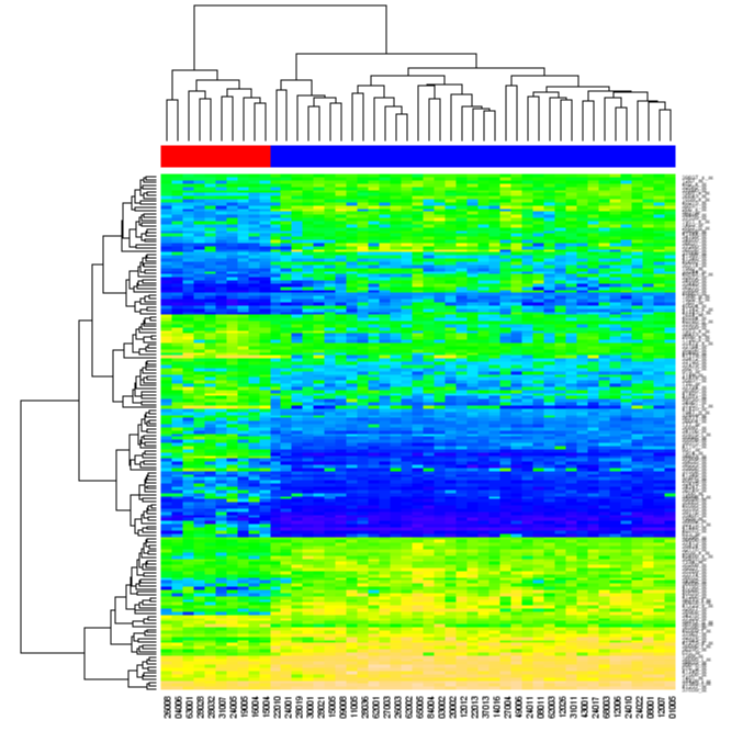 Using R to draw a Heatmap from Microarray Data