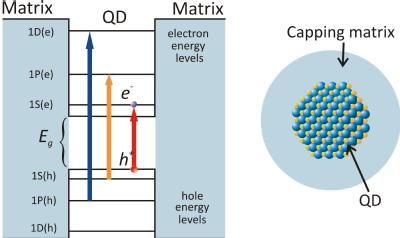 A schematic of a QD and its atomic like energy levels