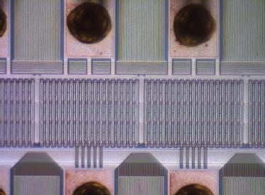 Microchip under optical microscope