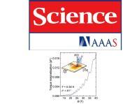Unconventional Fermi surface in an insulating state,  B. S. Tan, Y.-T. Hsu, B. Zeng, M. Ciomaga Hatnean, N. Harrison, Z. Zhu, M. Hartstein, M. Kiourlappou, A. Srivastava, M. D. Johannes, T. P. Murphy, J.-H. Park, L. Balicas, G. G. Lonzarich, G. Balakrishnan, and S. E. Sebastian,  Science 349, 287 (2015).