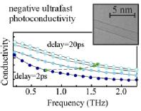 Negative photoconductivity in carbon nanotubes