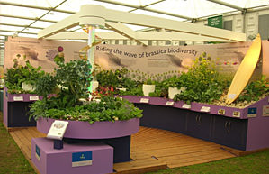 Biodiversity exhibition stall