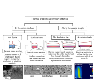 Picture: Causes and Effects of thermal and microstructural gradients in flash sintered ceramics
