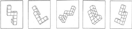 Example of a visuospatial excercise part of the vandenberg and kuse mental rotations test.