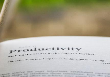 Dictionary open on the 'Productivity' definition.