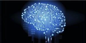 data_brain.jpg