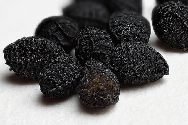 Nigela seeds