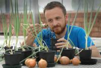 Dr Andrew Taylor Warwick Crop Centre University of Warwick