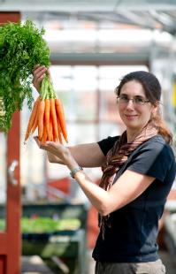 Dr Charlotte Allender works on the genetic diversity of carrots