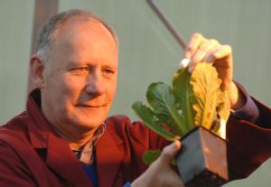 Dr John Walsh, University of Warwick