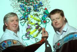 Professor Mark Rodger from Department of Chemistry and Centre for Scientific Computing, University of Warwick (left) Dr David Quigley from the Department of Physics and Centre for Scientific Computing, University of Warwick (right)