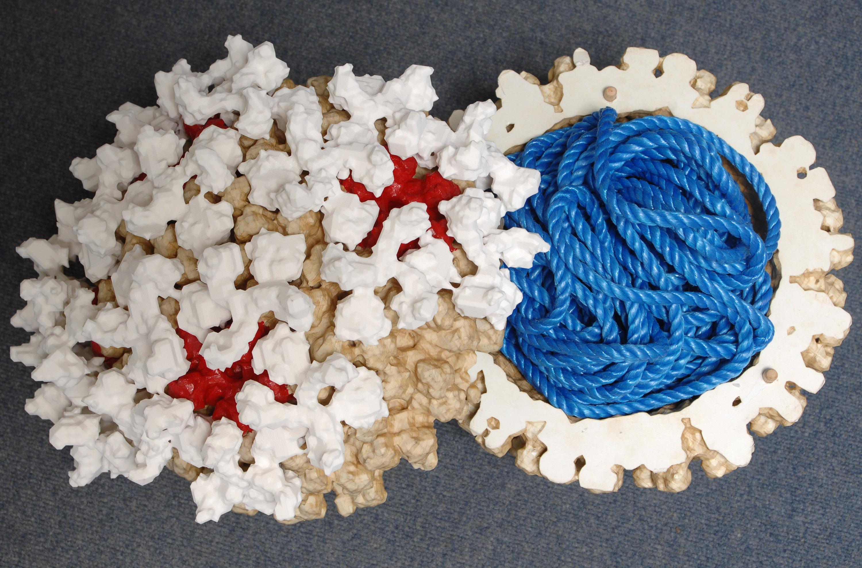 Engineers Create 3d Model To Help Biologists Combat Blue