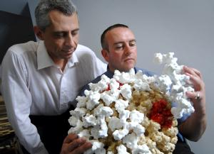 Dr Greg Gibbons University of Warwick, (right),  Robert Esnouf of Oxford (left)  with the Model