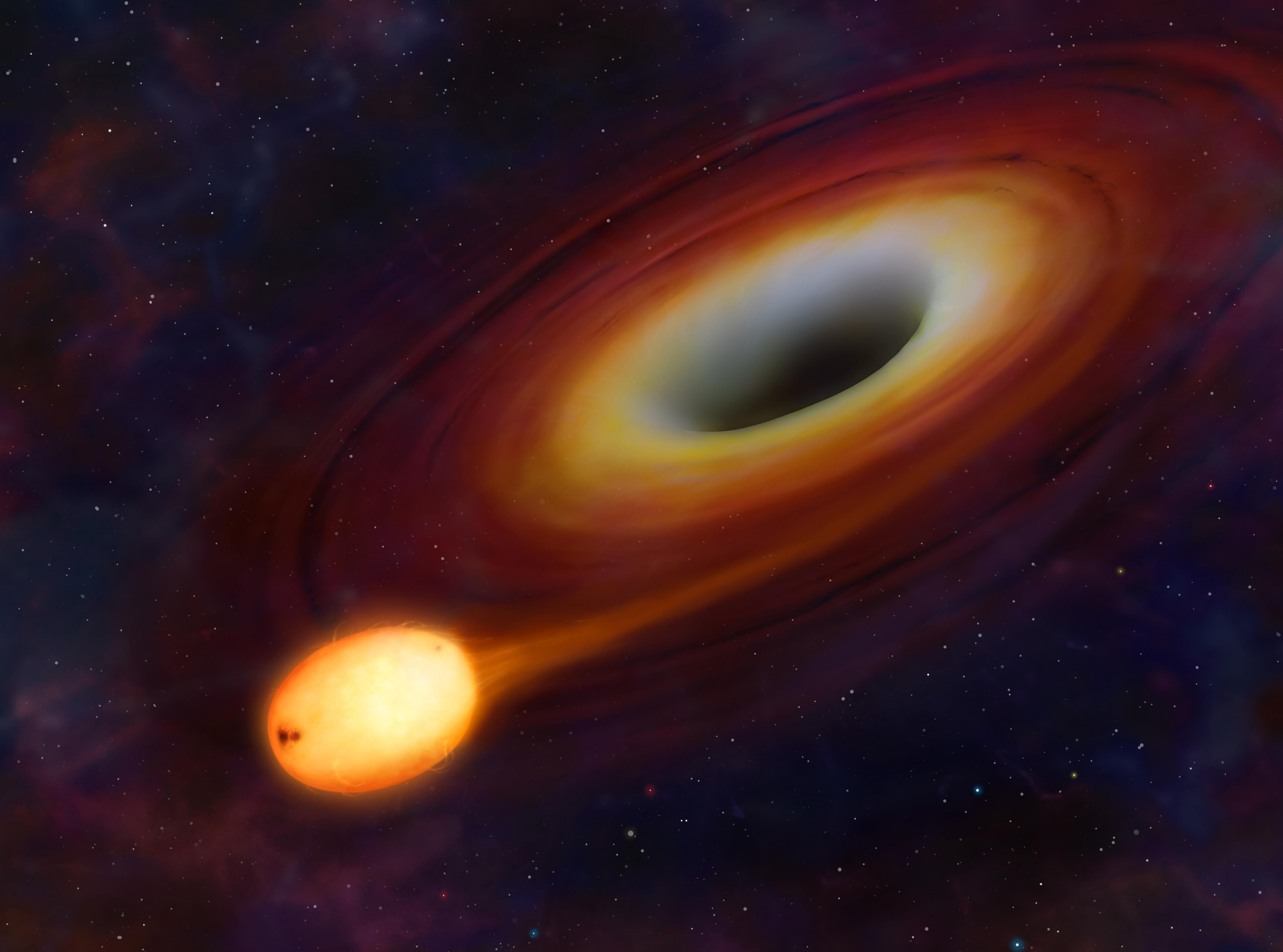 University of Warwick - Black hole kills star and blasts 3 ...