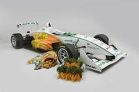 Car and vegetables