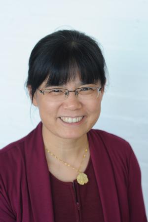 Professor Jihong Wang (Professor of Electrical Power & Control Engineering in the University of Warwick's School of Engineering)