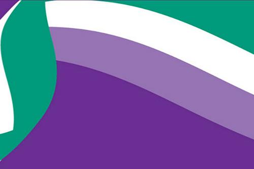 CSWG_logo