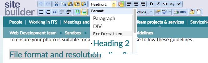 SiteBuilder toolbar with format drop-down menu expanded