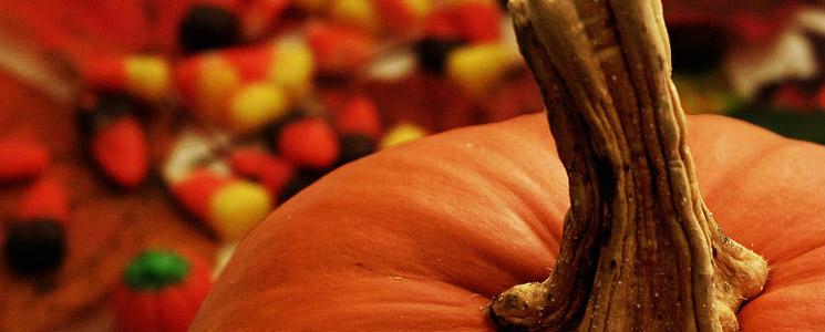 image of a pumpkin