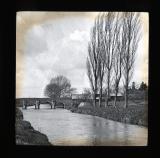 Multi-arched bridge and [poplar] trees