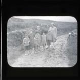 Urchins at Staigue Fort